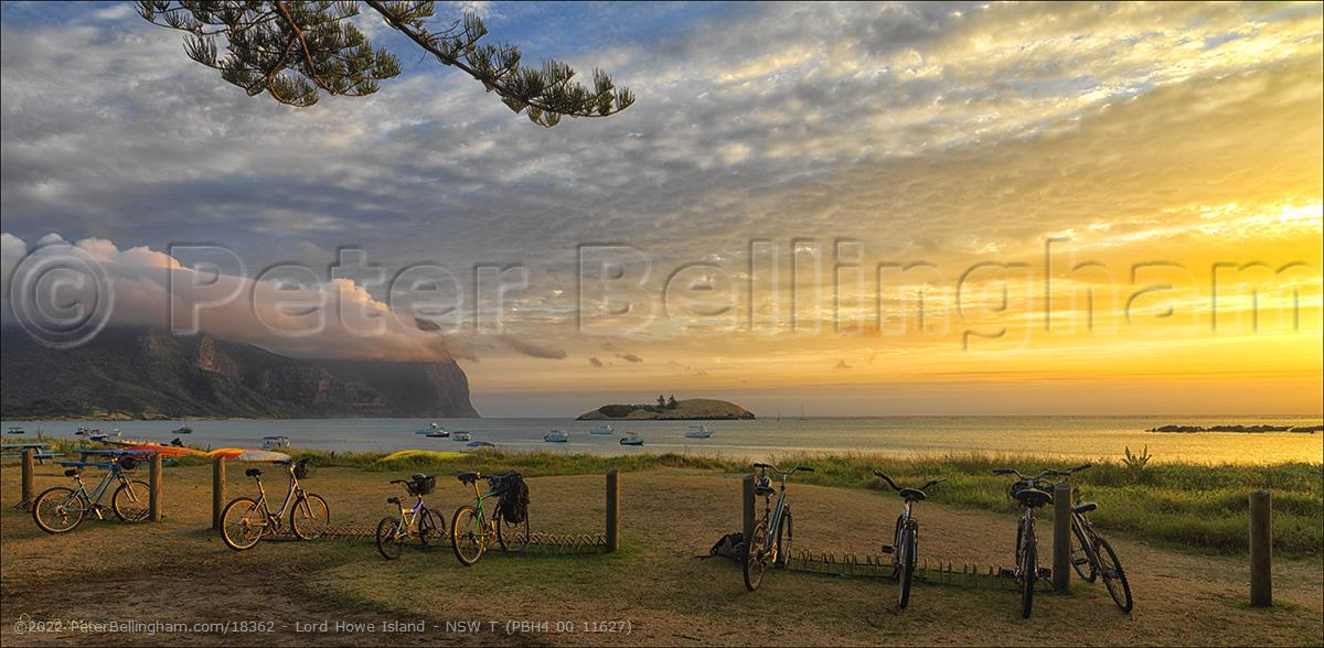 Peter Bellingham Photography Lord Howe Island - NSW T (PBH4 00 11627)