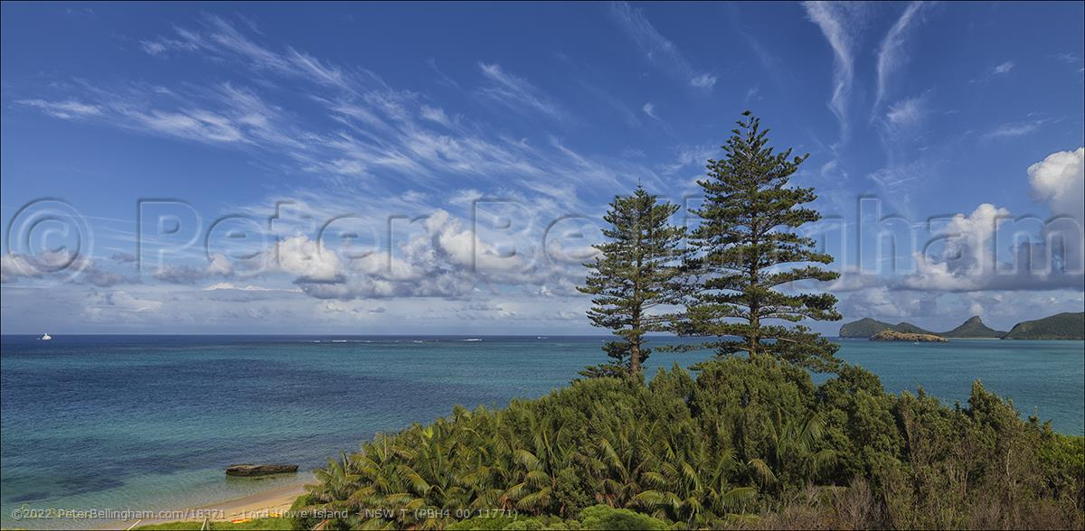 Peter Bellingham Photography Lord Howe Island - NSW T (PBH4 00 11771)