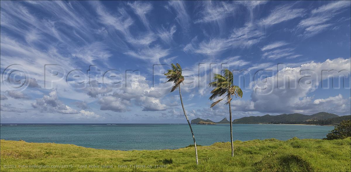 Peter Bellingham Photography Lord Howe Island - NSW T (PBH4 00 11784)