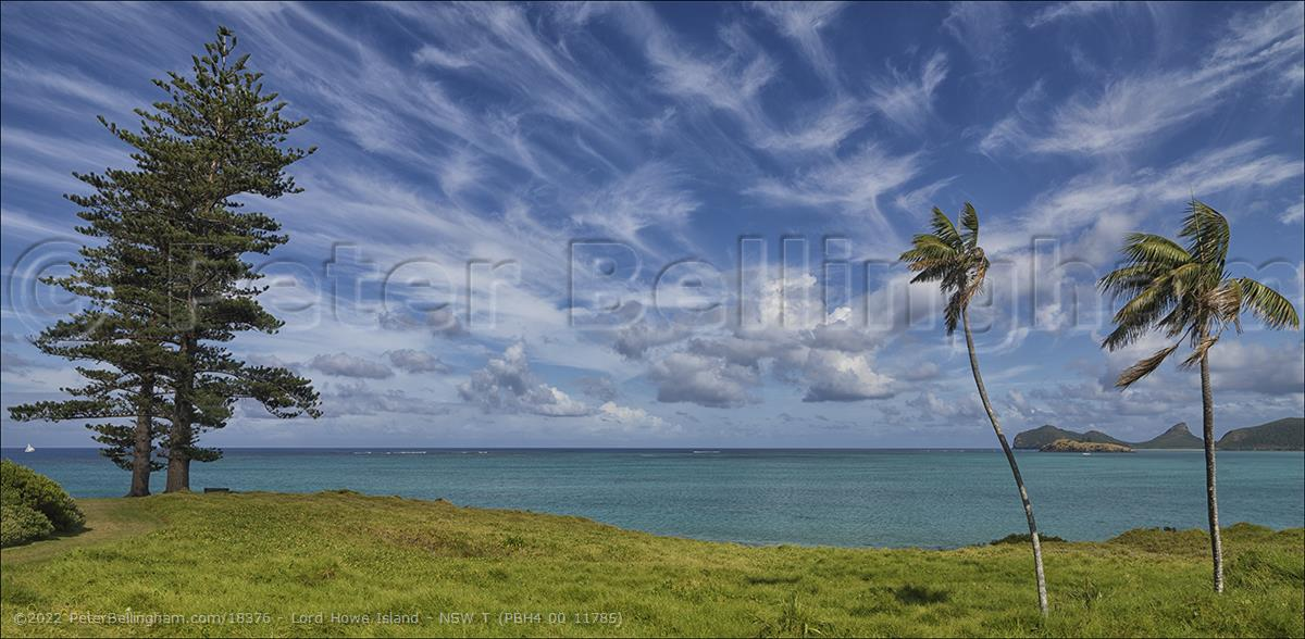Peter Bellingham Photography Lord Howe Island - NSW T (PBH4 00 11785)