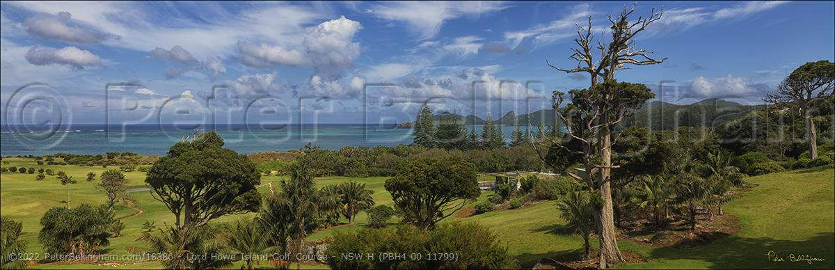 Peter Bellingham Photography Lord Howe Island Golf Course - NSW H (PBH4 00 11799)
