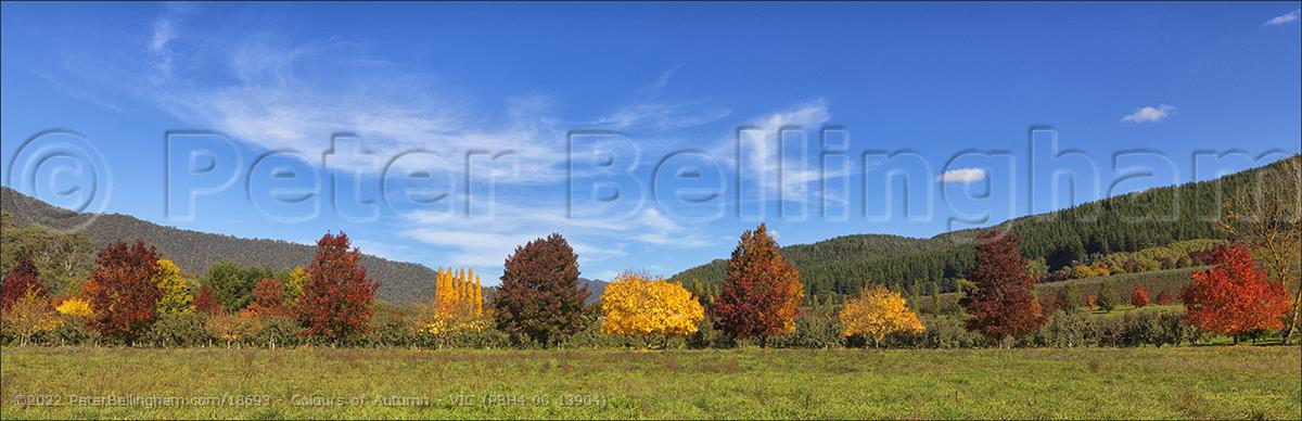 Peter Bellingham Photography Colours of Autumn - VIC (PBH4 00 13904)