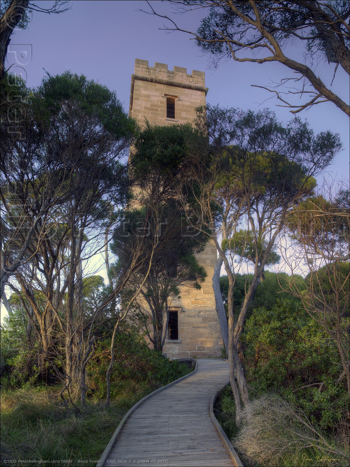 Peter Bellingham Photography Boyd Tower - Eden NSW T V (PBH4 00 8478)