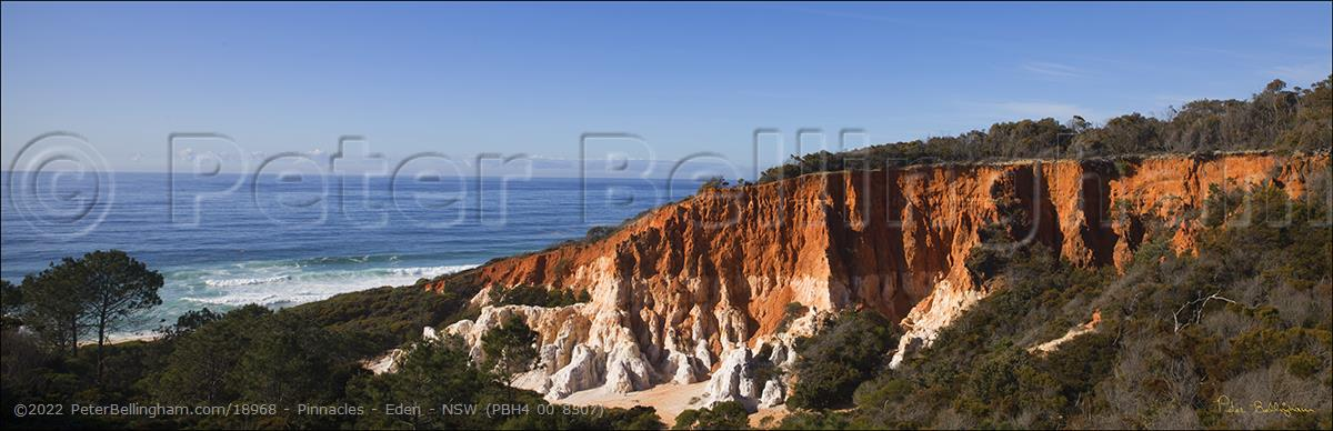 Peter Bellingham Photography Pinnacles - Eden - NSW (PBH4 00 8507)