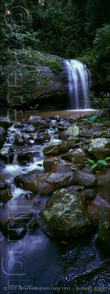 Peter Bellingham Photography Buderim Waterfall - Vertical - QLD