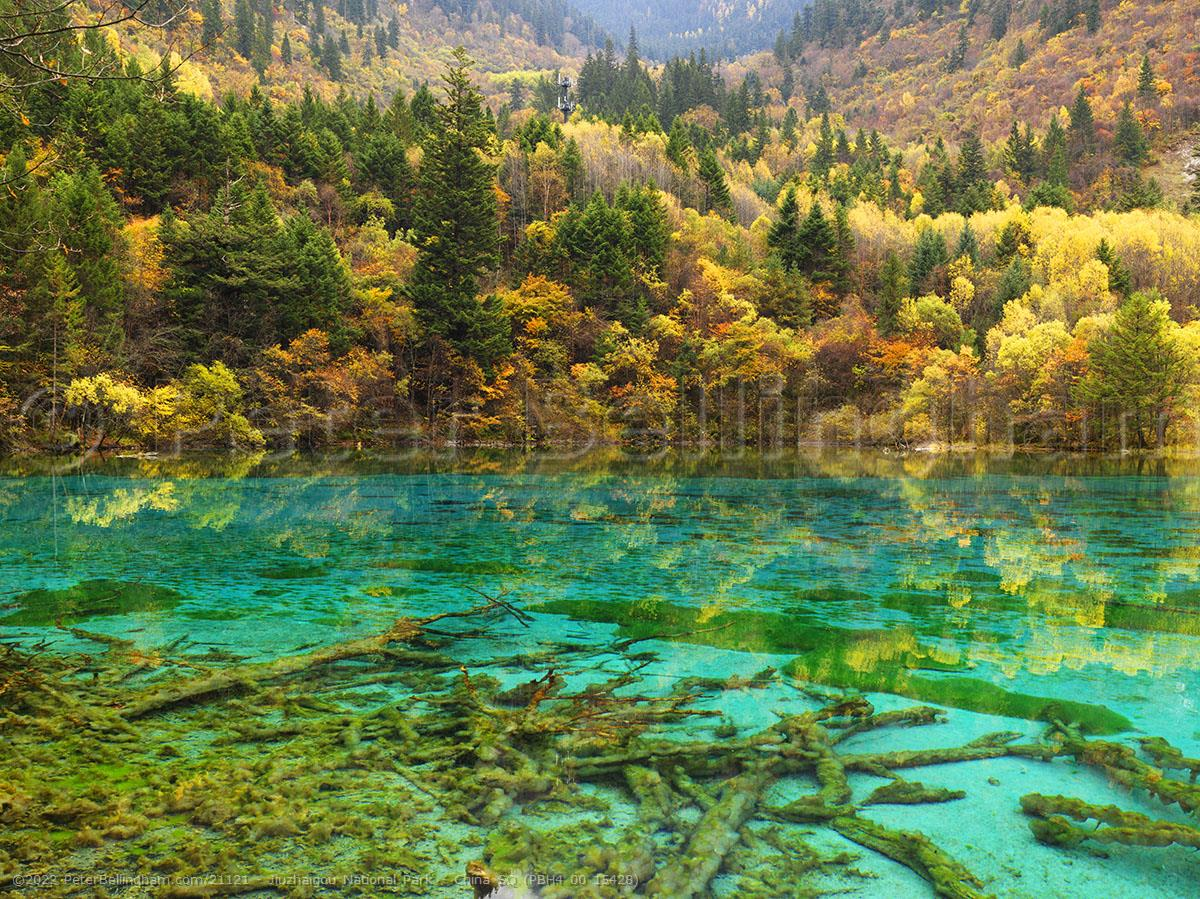 Peter Bellingham Photography Jiuzhaigou National Park - China SQ (PBH4 00 15428)
