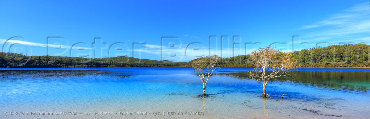 Peter Bellingham Photography Lake McKenzie - Fraser Island - QLD (PB5D 00 51A1685)