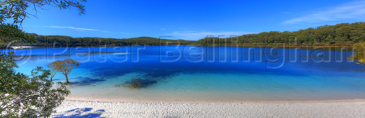 Peter Bellingham Photography Lake McKenzie - Fraser Island - QLD (PB5D 00 51A1688)
