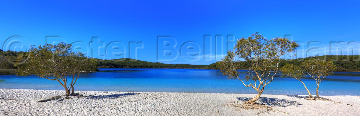 Peter Bellingham Photography Lake McKenzie - Fraser Island - QLD (PB5D 00 51A1692)