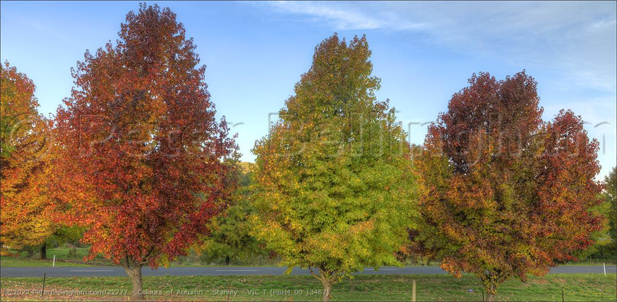 Peter Bellingham Photography Colours of Autumn - Stanley - VIC T (PBH4 00 13487)