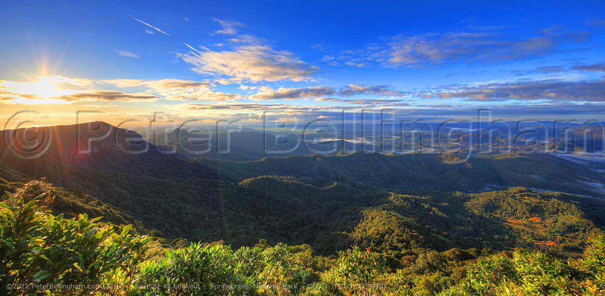 Peter Bellingham Photography Best of All Lookout - Springbrook National Park - QLD T (PB5D 00 3930)