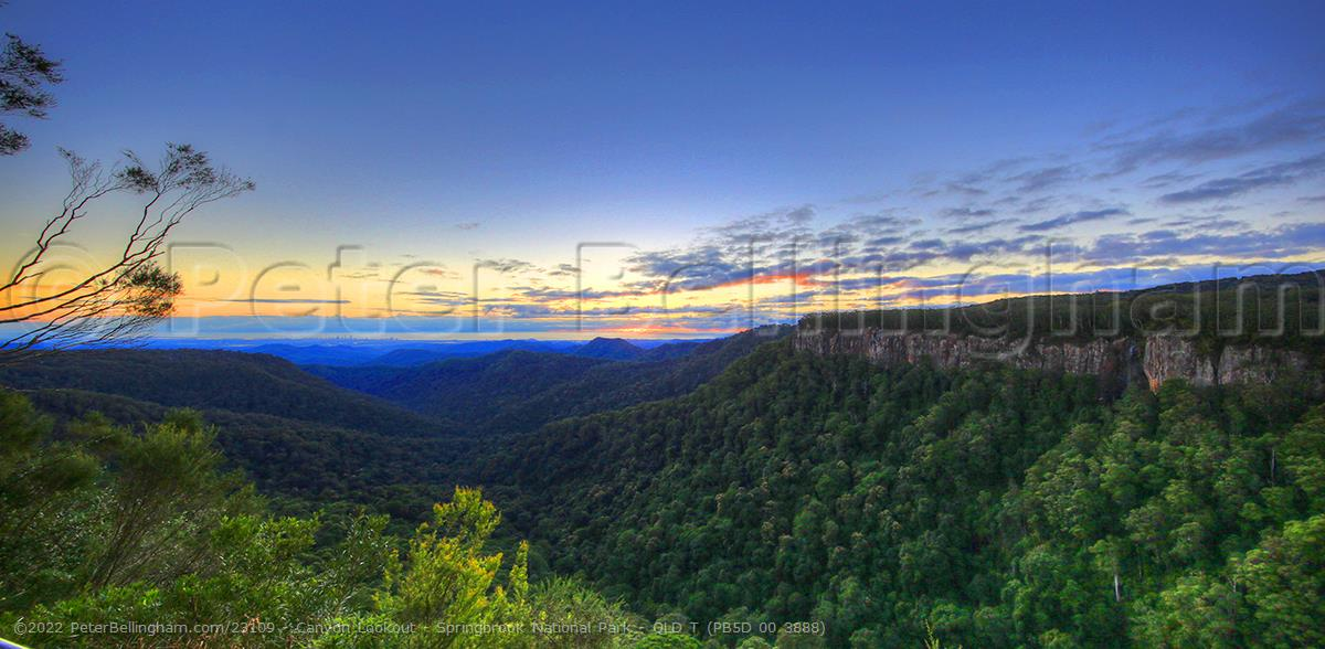 Peter Bellingham Photography Canyon Lookout - Springbrook National Park - QLD T (PB5D 00 3888)