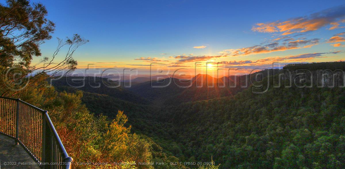 Peter Bellingham Photography Canyon Lookout - Springbrook National Park - QLD T (PB5D 00 3906)