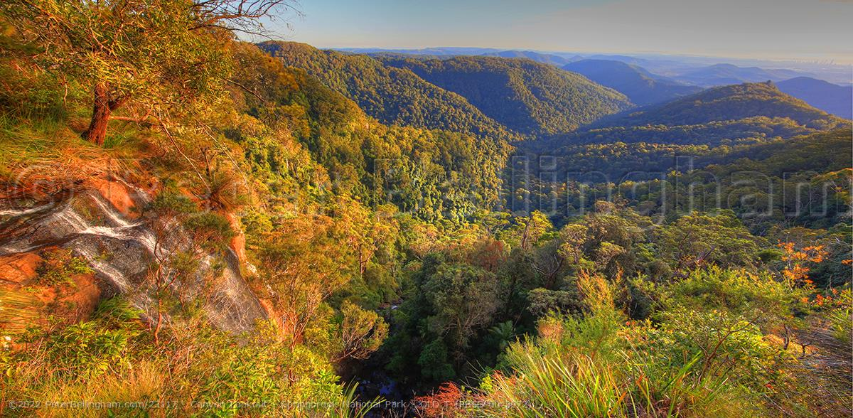 Peter Bellingham Photography Canyon Lookout - Springbrook National Park - QLD T (PB5D 00 3972)