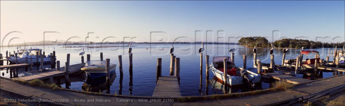 Peter Bellingham Photography Boats and Pelicans - Tuncurry - NSW (PB00 2159)
