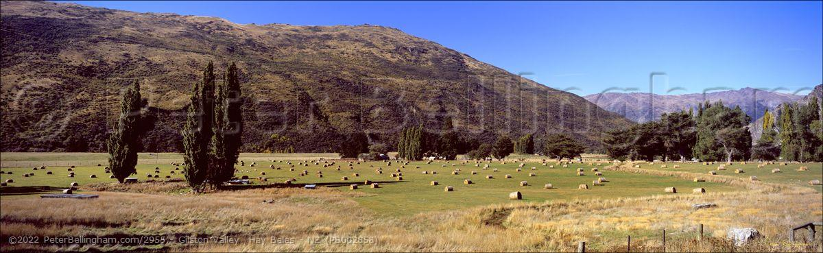 Peter Bellingham Photography Gilston Valley  Hay Bales - NZ (PB002858)