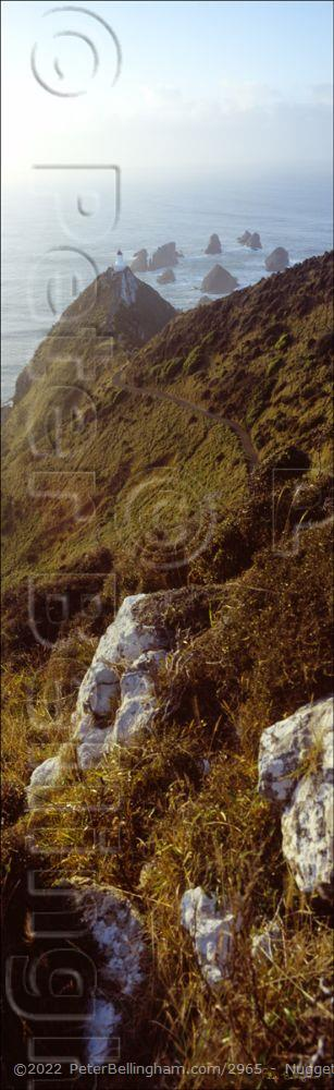 Peter Bellingham Photography Nugget Point Lighthouse Vertical- NZ (PB00 2725)