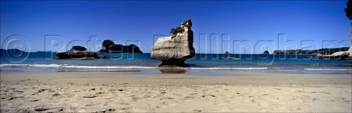 Peter Bellingham Photography Corrimandel Peninsular - NZ (PB00 )