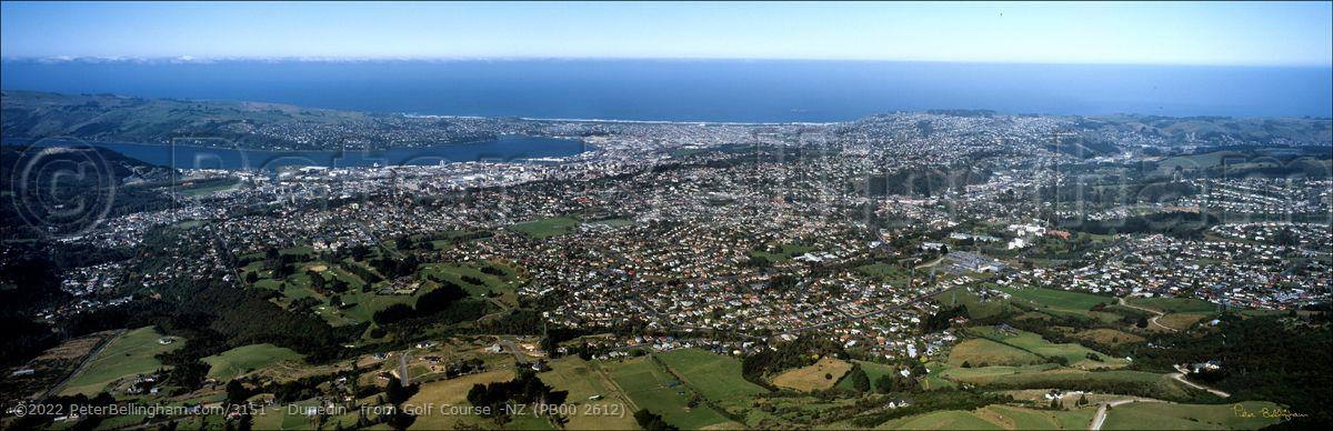 Peter Bellingham Photography Dunedin  from Golf Course -NZ (PB00 2612)