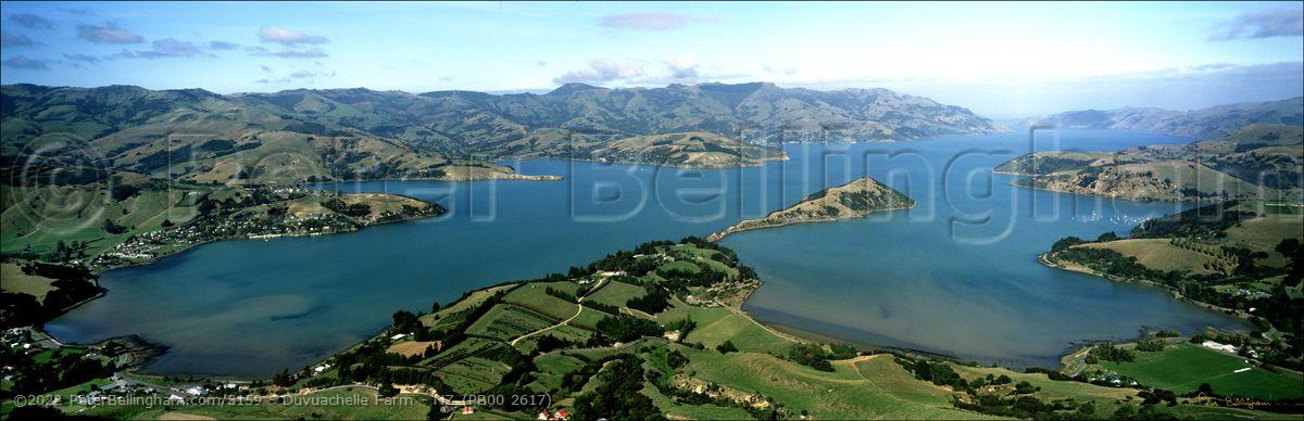 Peter Bellingham Photography Duvuachelle Farm - NZ (PB00 2617)