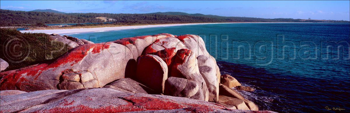 Peter Bellingham Photography Bay of Fires 14 - TAS (PB00 4372)