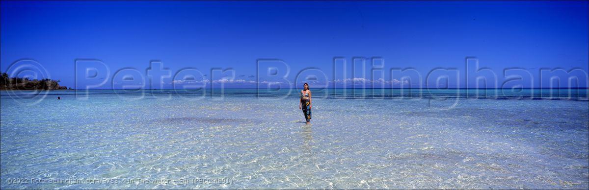 Peter Bellingham Photography In The water - Fiji (PB00 4891)