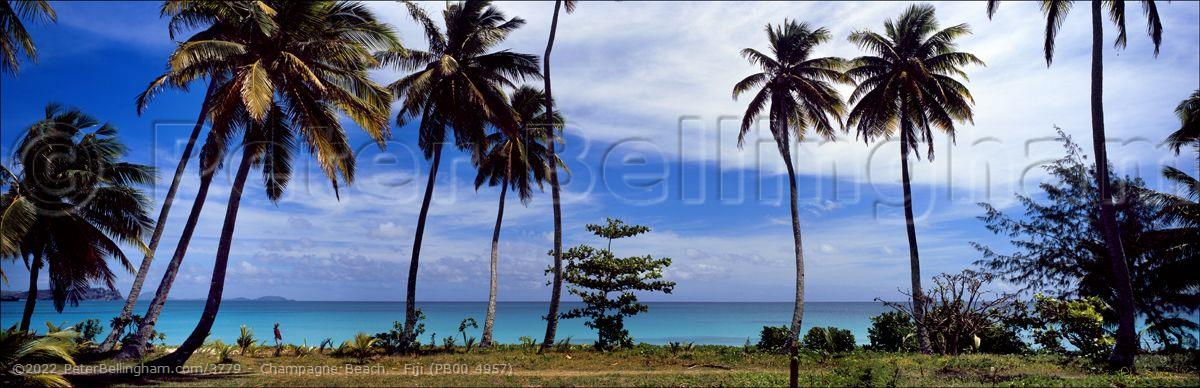 Peter Bellingham Photography Champagne Beach - Fiji (PB00 4957)