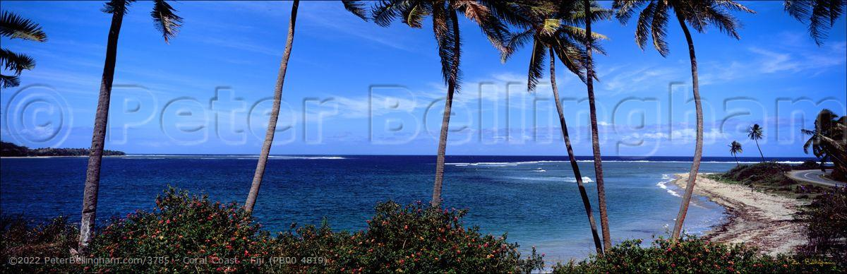 Peter Bellingham Photography Coral Coast - Fiji (PB00 4819)