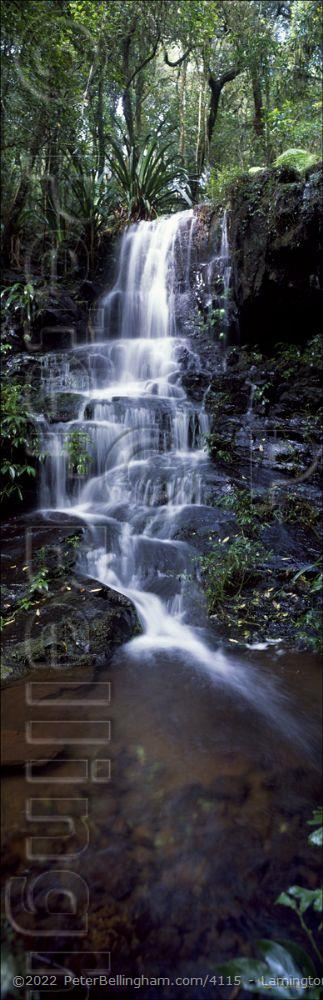 Peter Bellingham Photography Lamington Waterfall (PB00 1961)