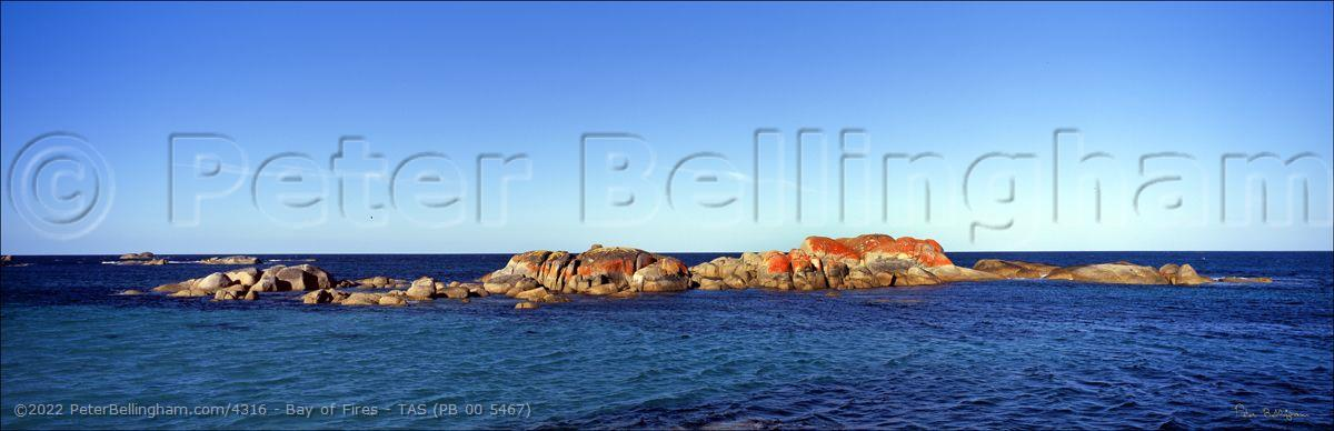Peter Bellingham Photography Bay of Fires - TAS (PB 00 5467)