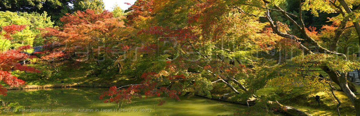 Peter Bellingham Photography Autumn in Japan H (PBH3 00 0020)