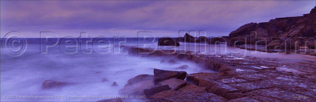 Peter Bellingham Photography Forresters Beach - NSW H (PBH3 00 0288)