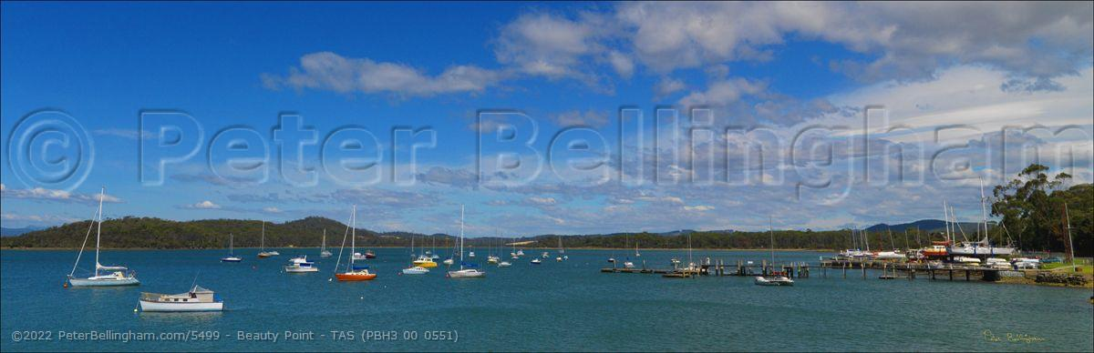 Peter Bellingham Photography Beauty Point - TAS (PBH3 00 0551)