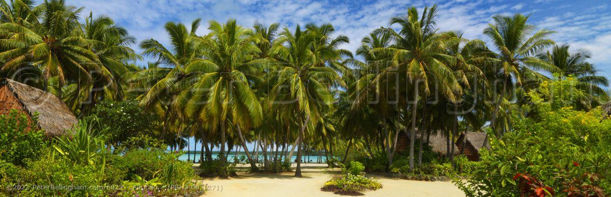 Peter Bellingham Photography Aitutaki - (PBH3 00 1271)