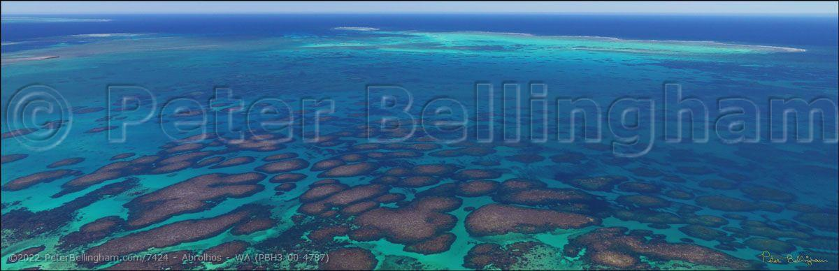 Peter Bellingham Photography Abrolhos - WA (PBH3 00 4787)