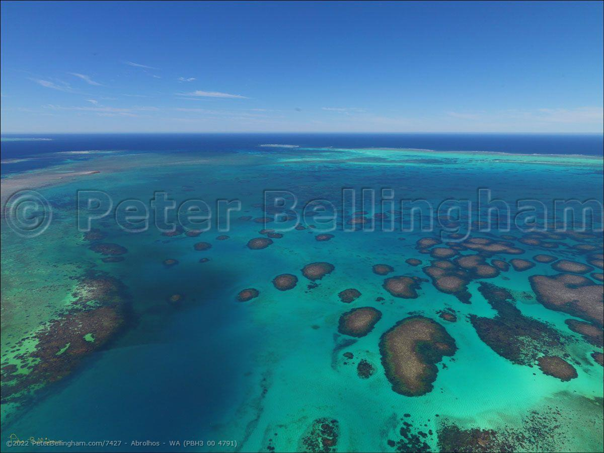 Peter Bellingham Photography Abrolhos - WA (PBH3 00 4791)