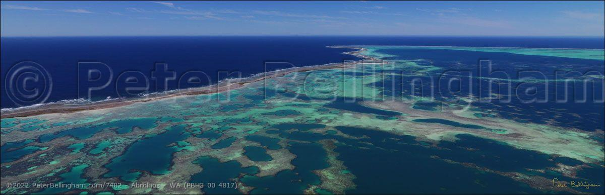 Peter Bellingham Photography Abrolhos - WA (PBH3 00 4817)