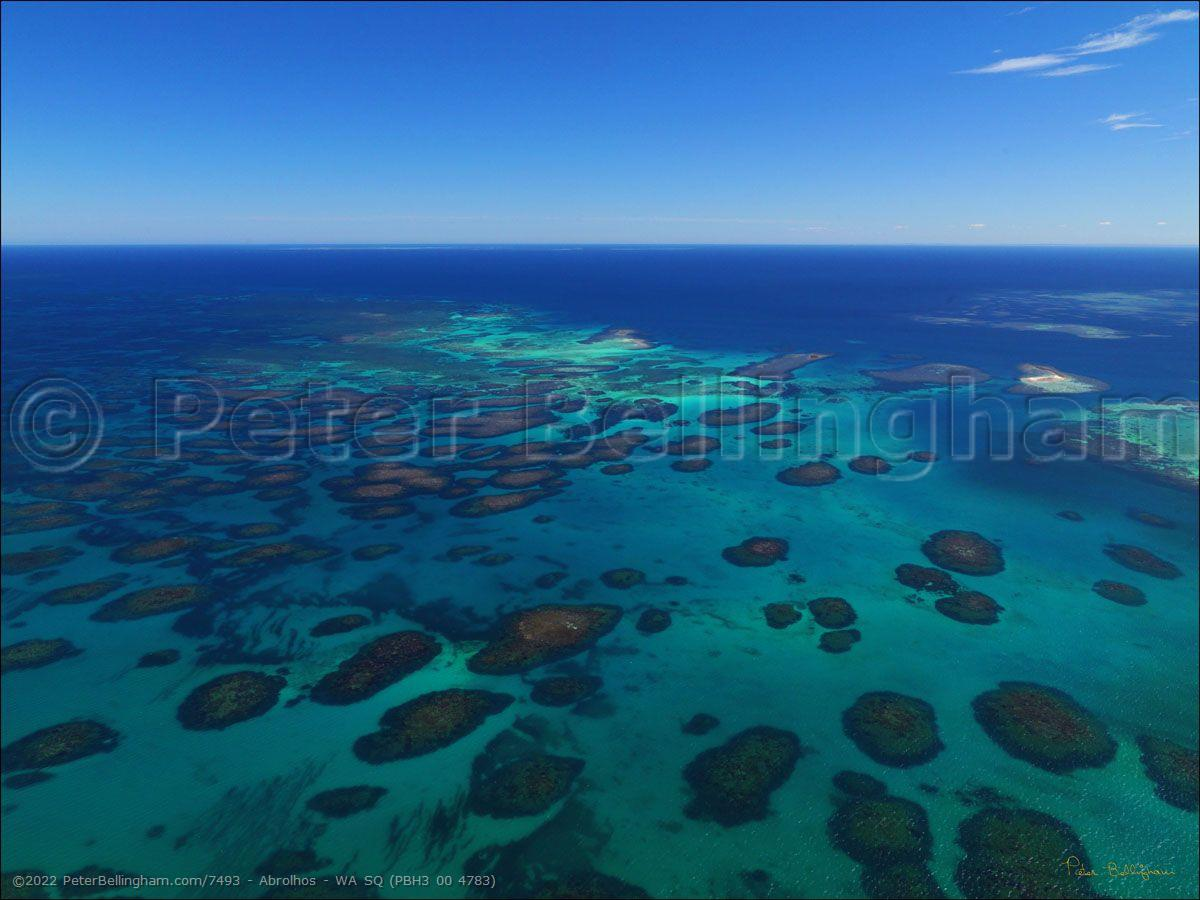 Peter Bellingham Photography Abrolhos - WA SQ (PBH3 00 4783)