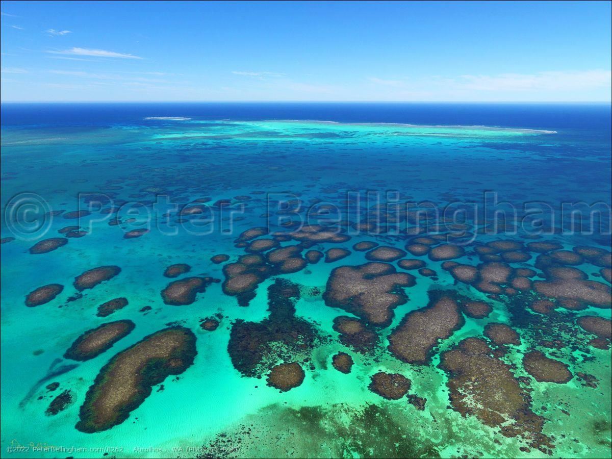 Peter Bellingham Photography Abrolhos - WA (PBH3 00 4790)