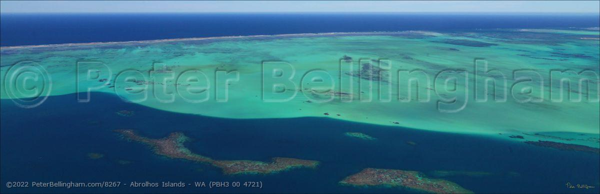 Peter Bellingham Photography Abrolhos Islands - WA (PBH3 00 4721)