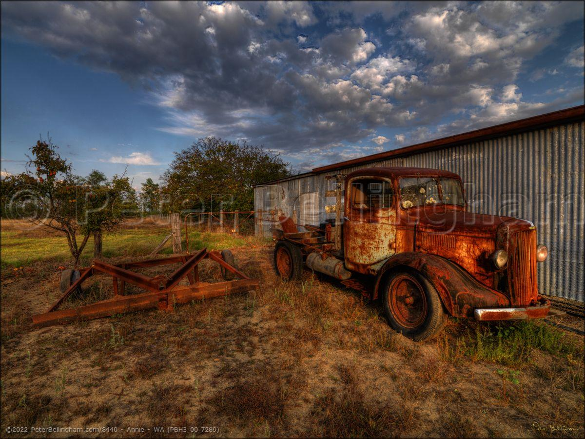 Peter Bellingham Photography Annie - WA (PBH3 00 7289)