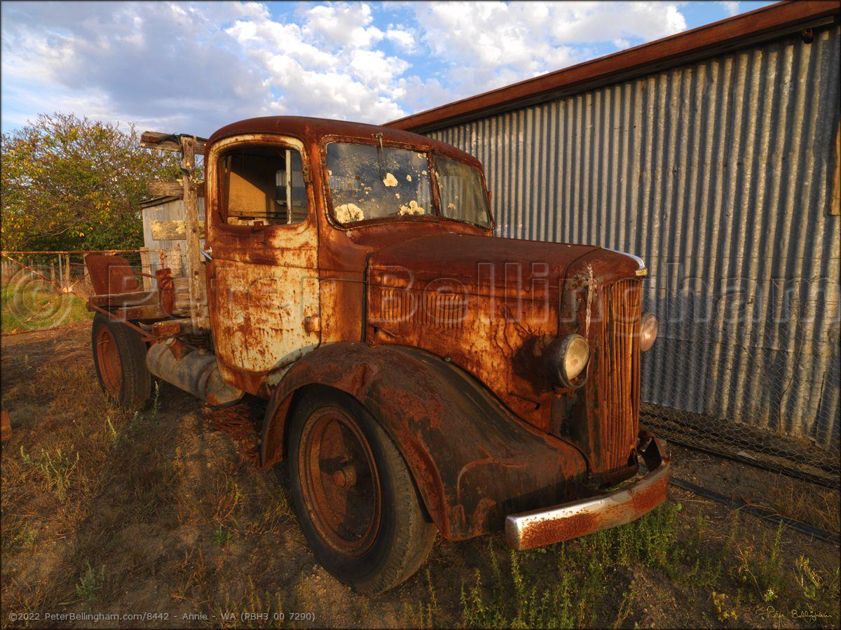 Peter Bellingham Photography Annie - WA (PBH3 00 7290)
