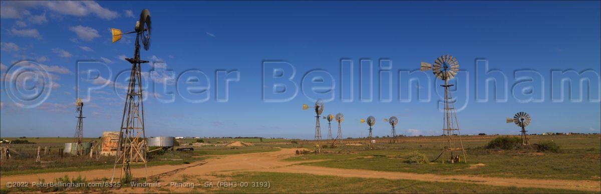 Peter Bellingham Photography Windmills - Penong - SA (PBH3 00 3193)