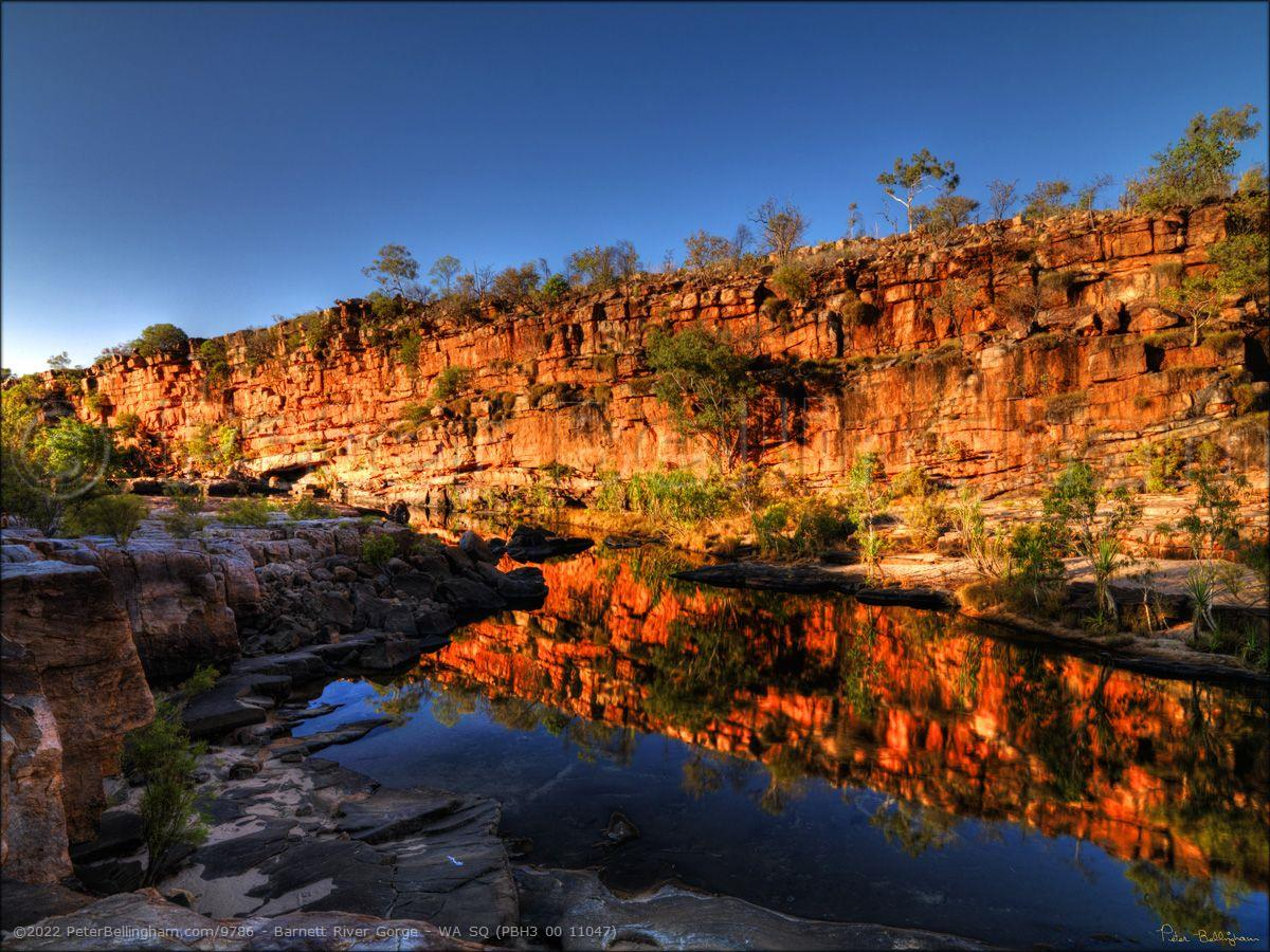 Peter Bellingham Photography Barnett River Gorge - WA SQ (PBH3 00 11047)