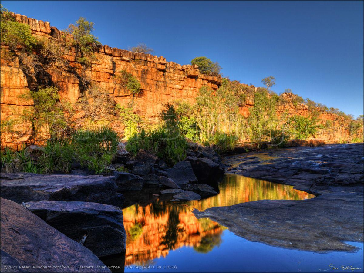 Peter Bellingham Photography Barnett River Gorge - WA SQ (PBH3 00 11053)